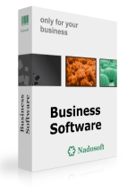 Business software development